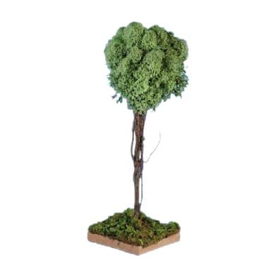 Albero di lichene H 18 cm
