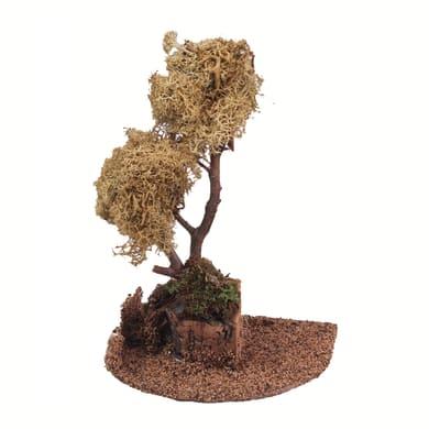 Alberi di lichene a chioma gialla H 18 cm