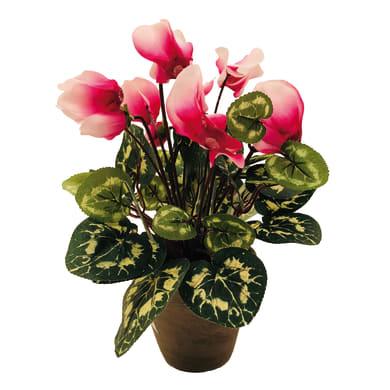 Pianta artificiale Ciclamino rosa in vaso H 35 cm