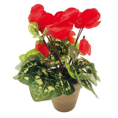 Pianta artificiale Ciclamino rosso in vaso H 35 cm