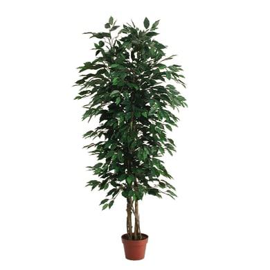 Pianta artificiale Ficus in vaso H 150 cm
