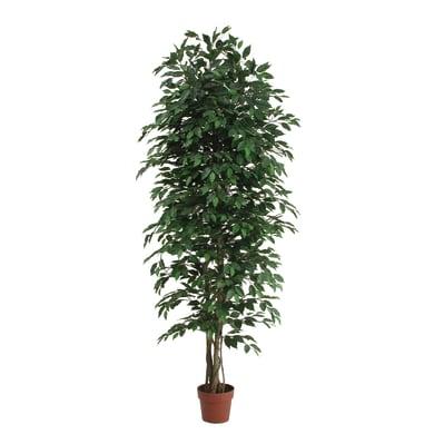 Pianta artificiale Ficus in vaso H 200 cm