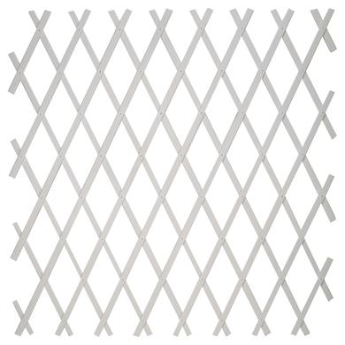 Traliccio estensibile Treplas in pvc L 100 x H 100 cm , spessore 7 mm