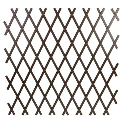 Traliccio estensibile Treplas in pvc L 100 x H 200 cm , spessore 7 mm