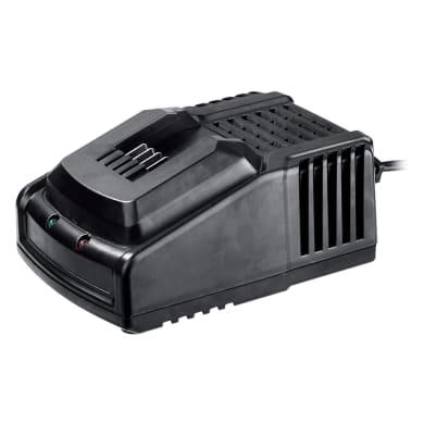 Caricabatterie DEXTER POWER 220 V 0 Ah