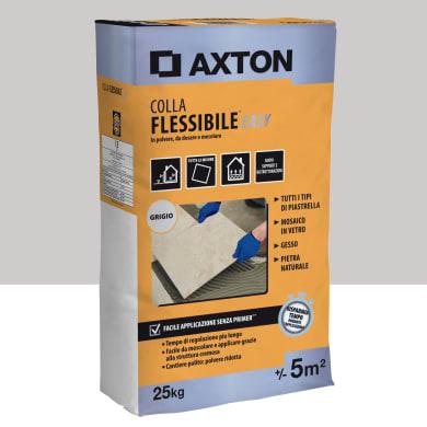 Colla AXTON in polvere 25 kg