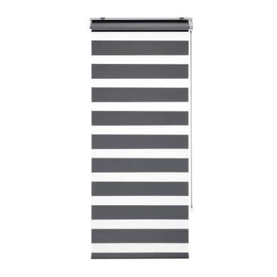 Tenda avvolgibile giorno / notte INSPIRE Quebec night/day grigio 180 x 250 cm
