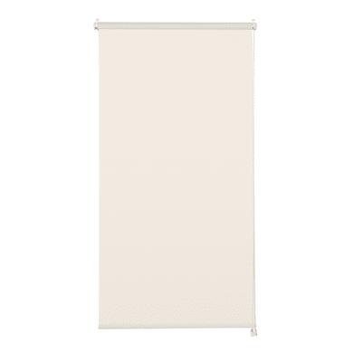 Tenda a rullo filtrante INSPIRE Screen lino 45 x 190 cm