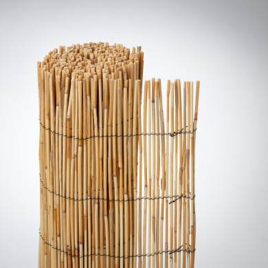 Arella bambù L 3 x H 2 m