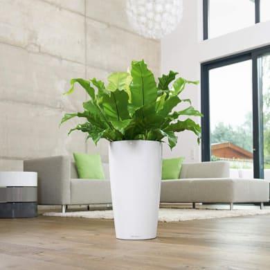 Vaso Rondo Premium LECHUZA in plastica bianco H 56 Ø 32 cm