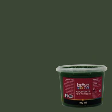 Colorante liquido universale per esterni 100 ml verde ossido