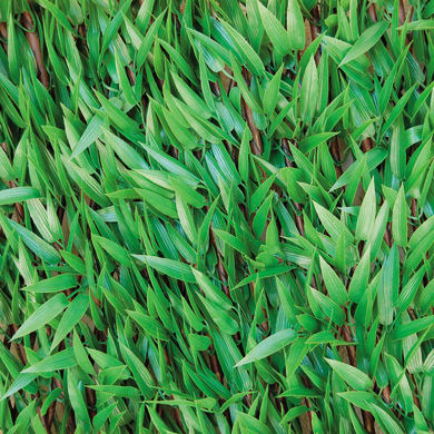 Siepe artificiale bambù L 2 x H 1 m