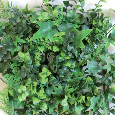 Parete verde artificiale edera L 0.5 x H 1 m