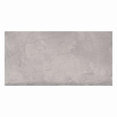 Piastrella per rivestimenti Emotion L 26 x H 52.2 cm grigio