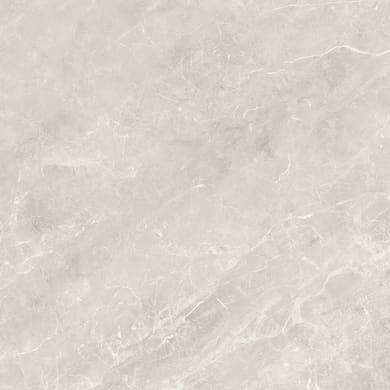 Piastrella Windsor 60 x 60 cm sp. 9.5 mm PEI 4/5 grigio