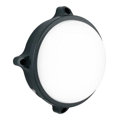 Plafoniera Ever LED integrato in policarbonato, nero, 15W 1200LM IP54