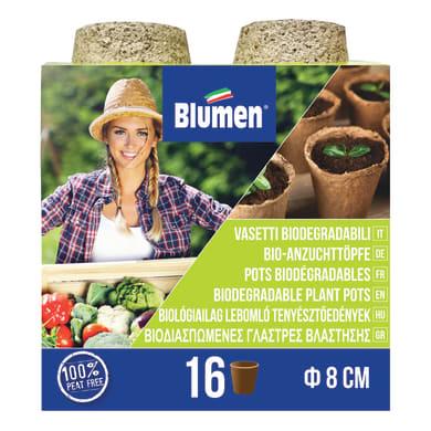 Supporto alla semina vasi cocco