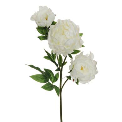 Fiore artificiale Peonia H 84 cm