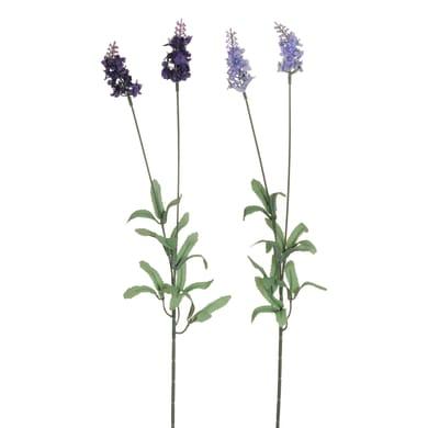 Fiore artificiale Lavanda H 70 cm