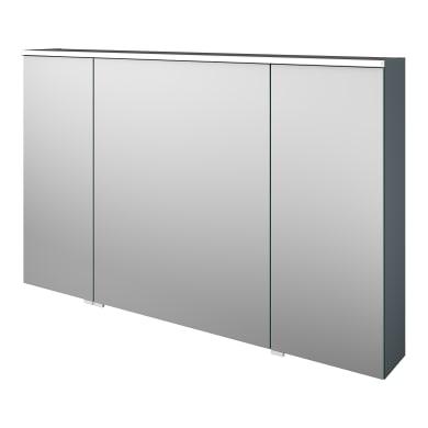 Specchio contenitore con illuminazione Neo L 120 x P 17 x H 75 cm argento opaco Sensea