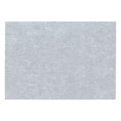 Pellicola Plastica auto adesiva grigio / argento 0.45x2 m