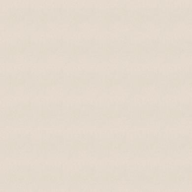 Tessuto al taglio TESSUTO OSCURANTE VANIGLIA H300 ML bianco 1 cm