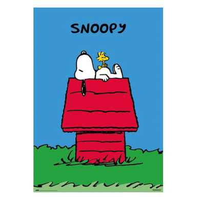 Poster Poster 61x91,5 cm Snoopy 61x91.5 cm