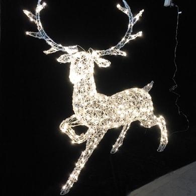 Renna 300 lampadine bianco caldo H 140 cm