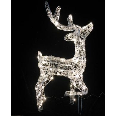 Renna 100 lampadine bianco caldo H 80 cm