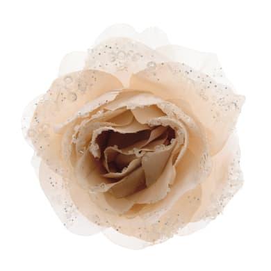 Rosa con molletta crema x P 8.5 cm Ø 14 cm