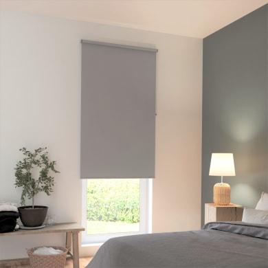 Tenda a rullo INSPIRE Tokyo oscurante grigio 150x250 cm
