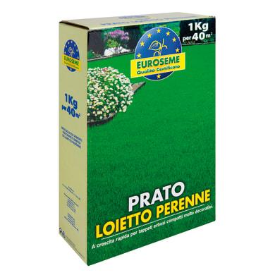 Seme per prato EUROSEME Loietto 1 kg