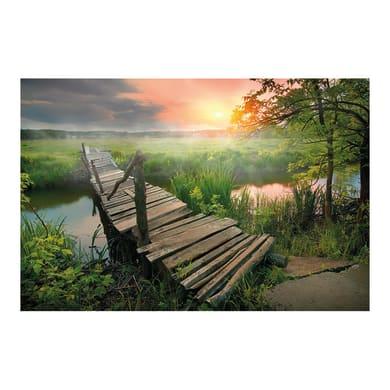 Legno stampato Natural Sunset 80.2x120.2 cm