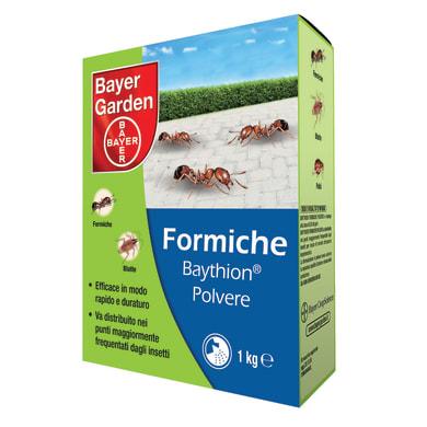 Esca per formiche PROTECT HOME Baythion polvere 1000