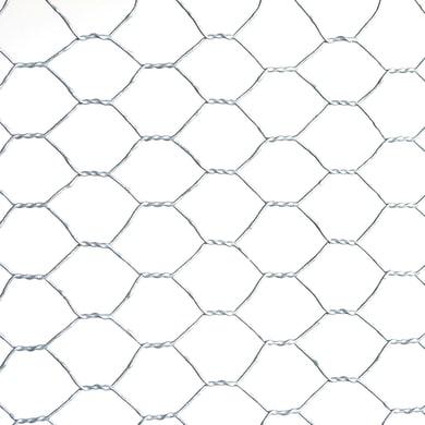 Rotolo di rete metallica a torsione semplice INTERMAS Examet10 grigio / argento L 10 x H 1 m