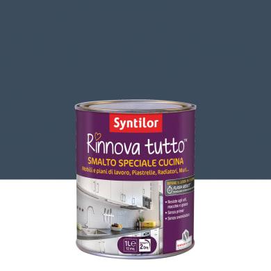 Smalto mobile cucina SYNTILOR 1 l mirtillo