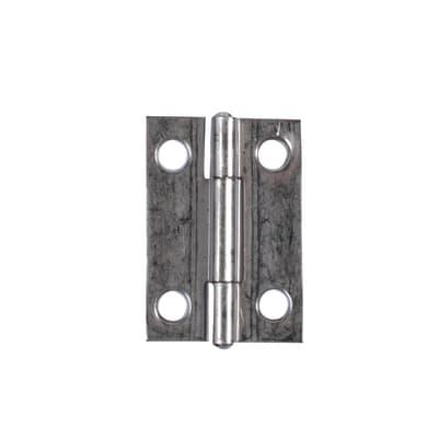 Cerniera L 30 x H 20 mm, acciaio inossidabile , 2 pezzi