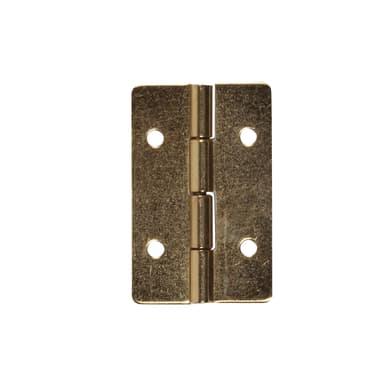 Cerniera L 20 x H 13 mm, ferro , 8 pezzi