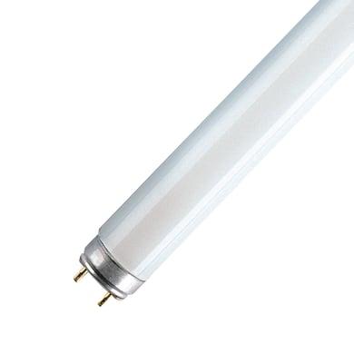 Tubo Fluorescente a doppio attacco l5821sb 1 LM bianco tenue L 150 cm