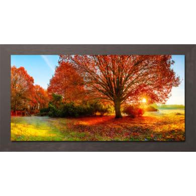 Quadro con cornice Autumn 136x76 cm