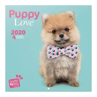 Poster cuccioli 30x30 cm