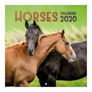 Poster cavalli 30x30 cm