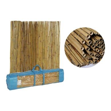Canna intera bambù L 3 x H 2 m