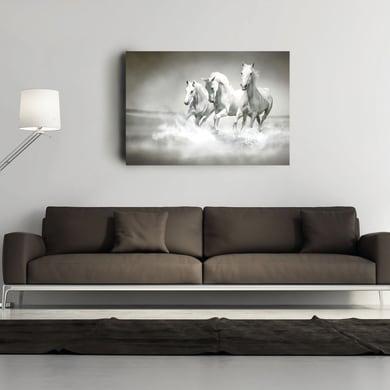 Quadro su tela Cavalli 90x60 cm