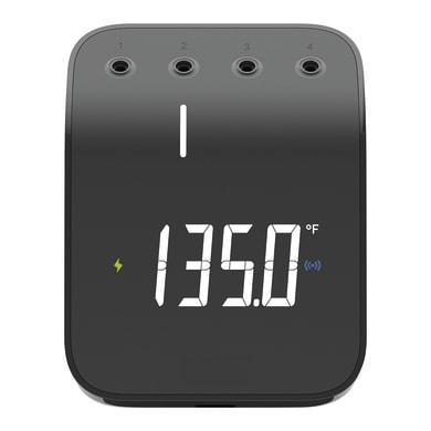 Termometro WEBER
