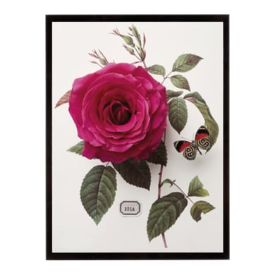 Stampa incorniciata Flor Dec - Rosa 15.7x15.7 cm