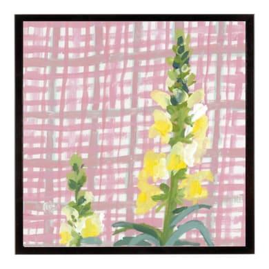 Stampa incorniciata Snapdragon 20.7x20.7 cm