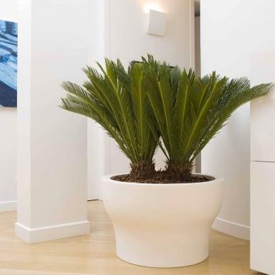 Vaso Fit in plastica colore bianco H 50 cm, Ø 55 cm