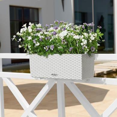 Vaso da fiori con riserva d'acqua bianco rettangolare 50 x 19 cm