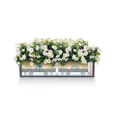 Vaso da fiori con riserva d'acqua marrone rettangolare 19 x 19 cm